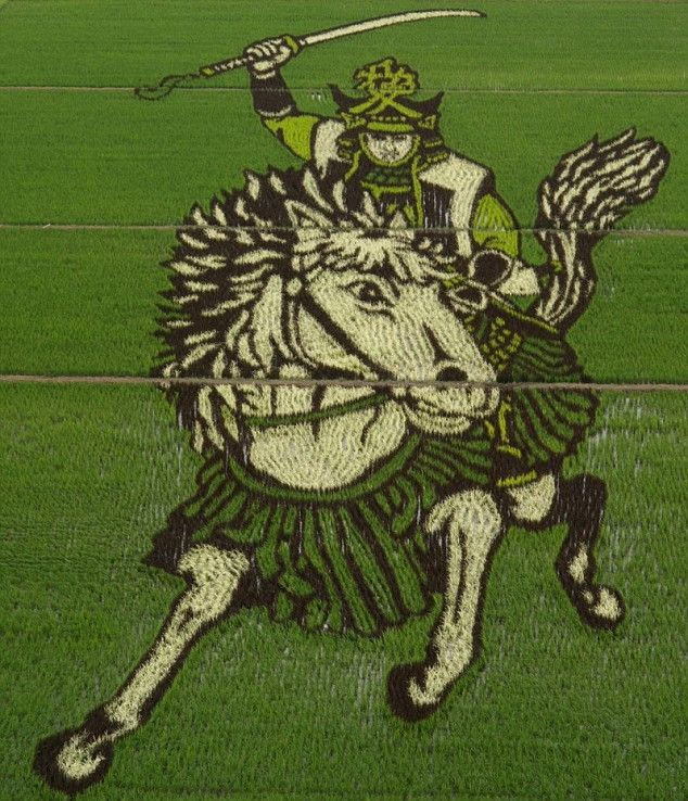 rice_field_art_01