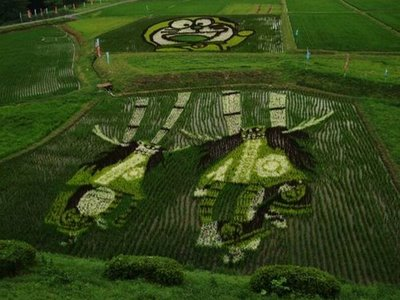 rice_field_art_07