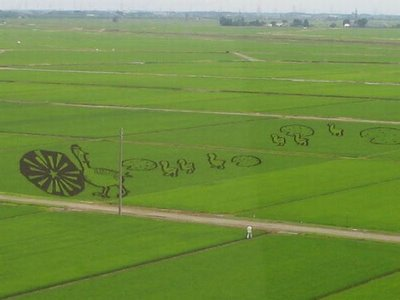 rice_field_art_08