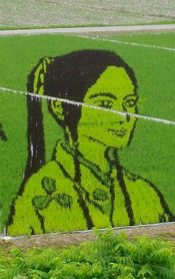 rice_field_art_09