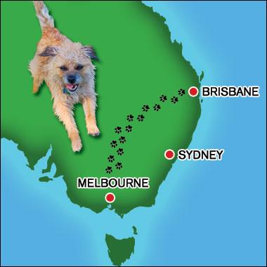 Muffy's Journey